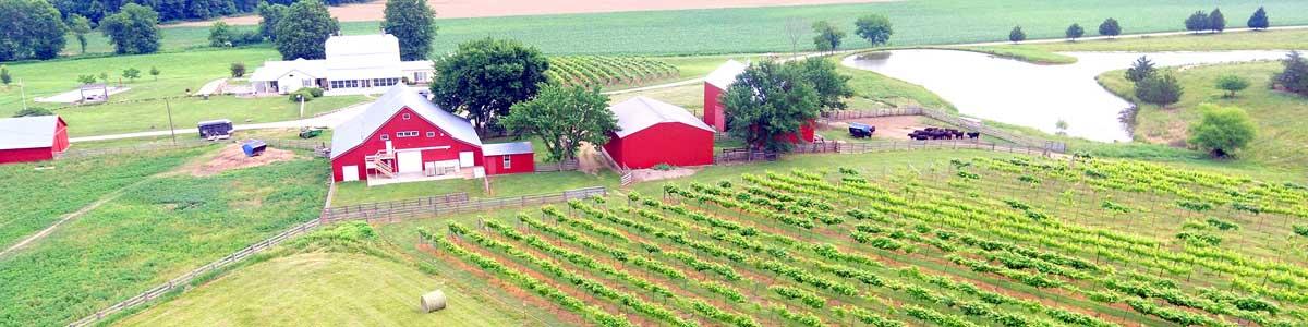 Neuner Farm