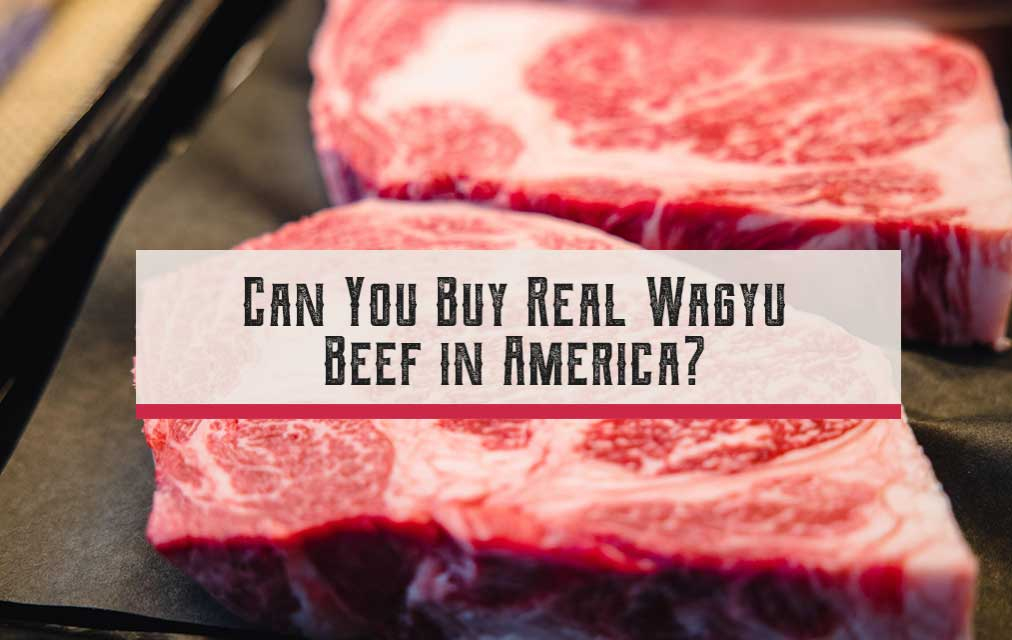 Can You Buy Real Wagyu Beef in America?